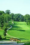 five-oaks-golf-course-photo-melinda-mcdowell-211